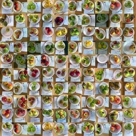 Красивые картинки на День яблока в Англии017