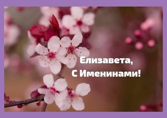 Красивые картинки на именины Елизаветы004
