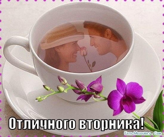 Красивые картинки на утро вторника осенью015