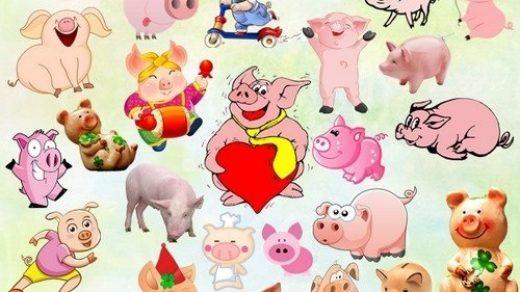 Красивые клипарт свинка002