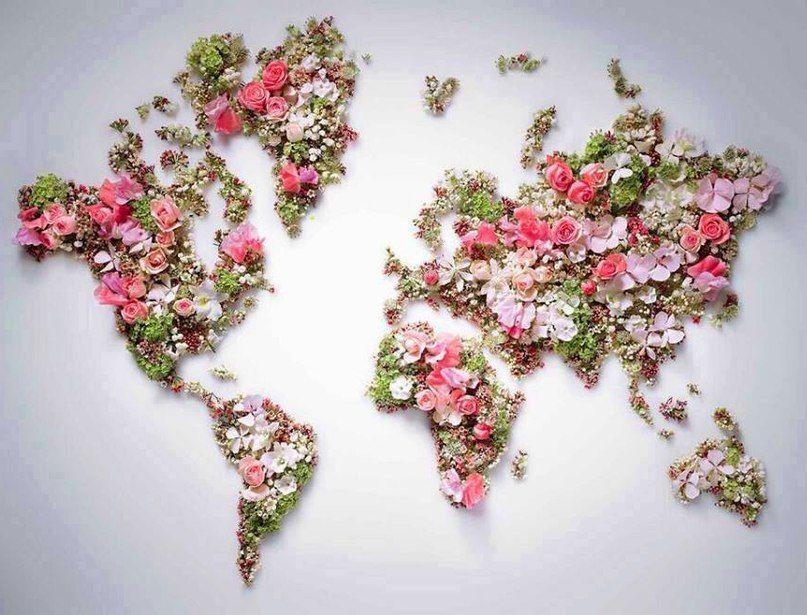 Красивый дизайн карта мира (9)
