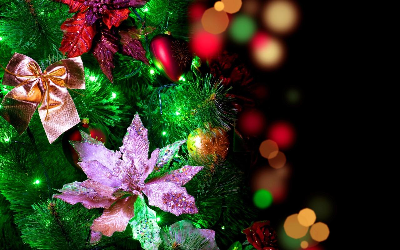 Лучшие обои для рабочего стола Новый год зима (13)