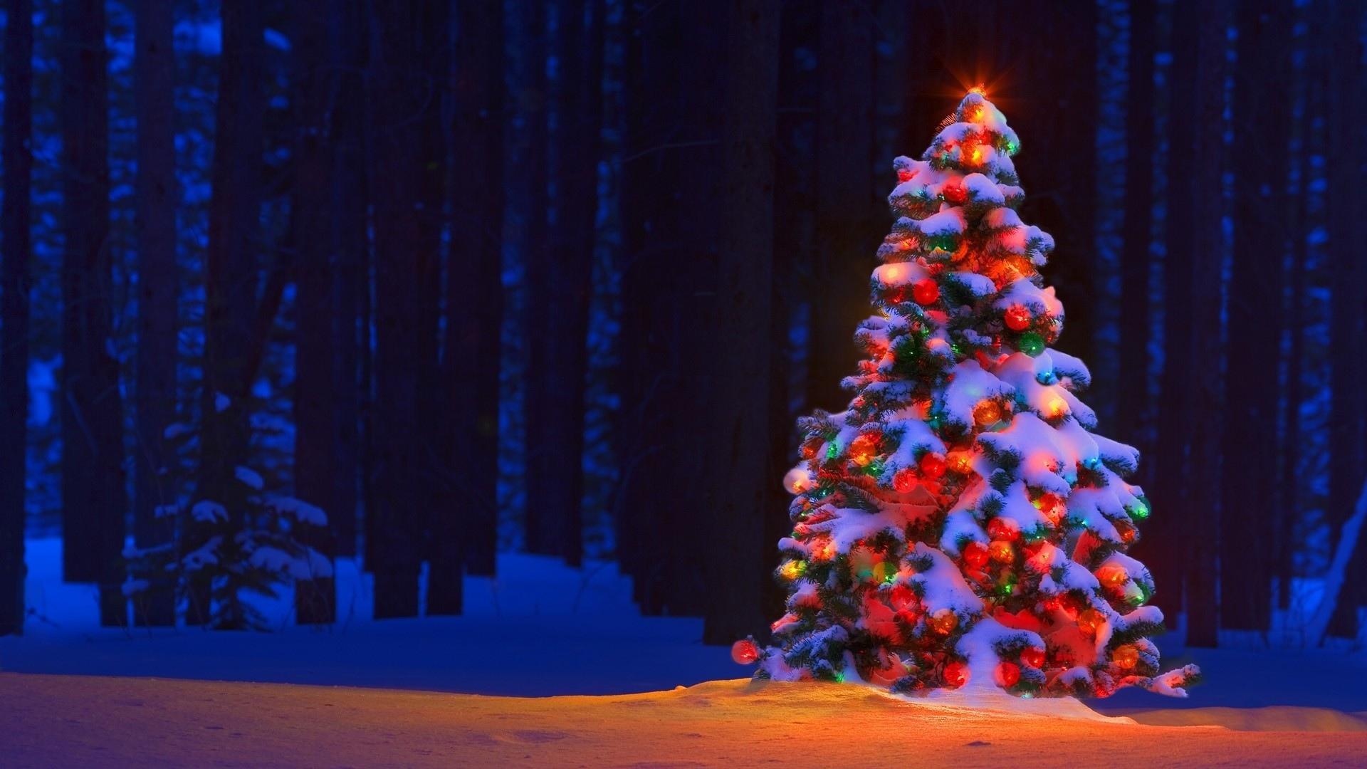 Лучшие обои для рабочего стола Новый год зима (15)