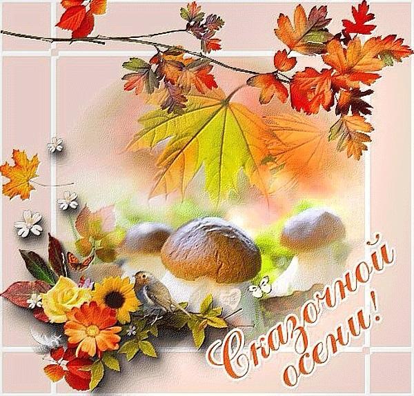 Лучшие поздравления с началом октября008