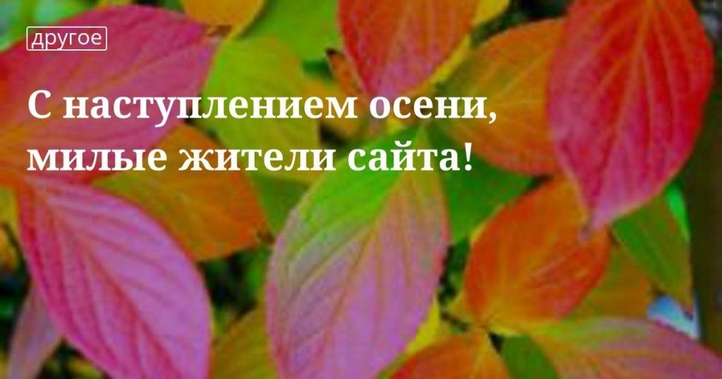 Милые картинки с началом октября014