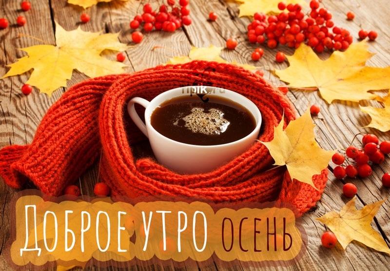 Милые открытки доброго и теплого утра октября003