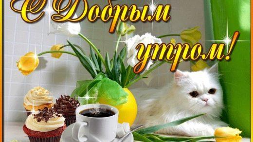 Милые открытки доброго и теплого утра октября006