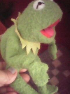 Мультяшная лягушка фото и картинки010