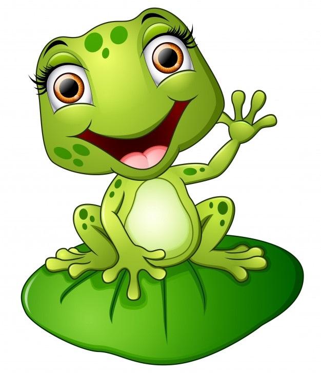Мультяшная лягушка фото и картинки012