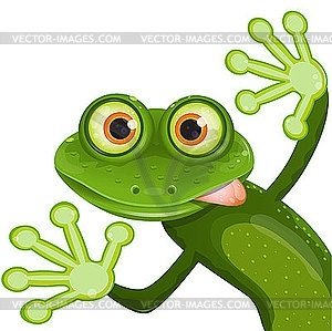 Мультяшная лягушка фото и картинки017