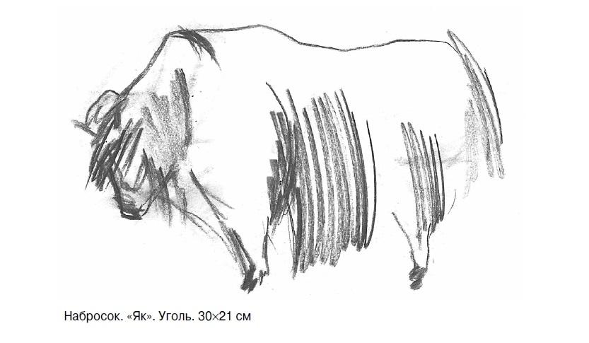Наброски и зарисовки животных и птиц021