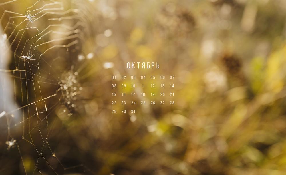 Октябрь на дворе картинки и фото (2)