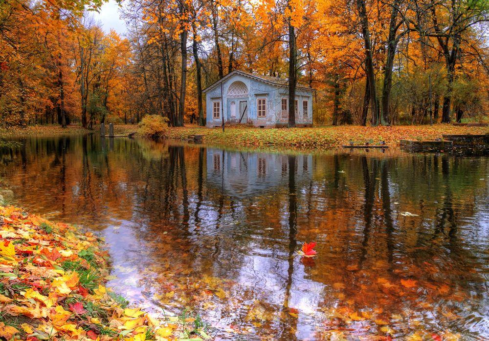 Октябрь на дворе картинки и фото (4)