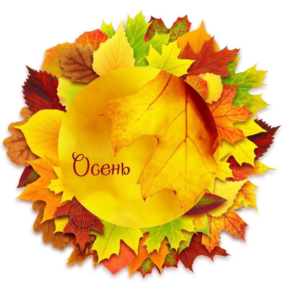 Осень день учителя картинки и открытки003