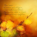 Осень день учителя картинки и открытки