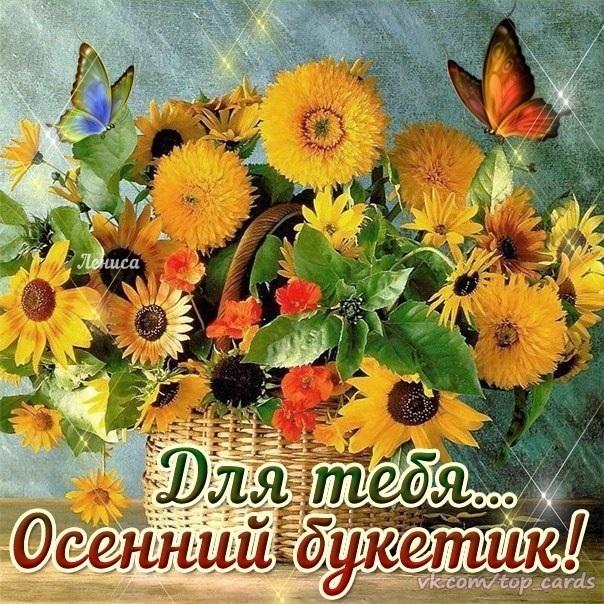 Осень и вторник красивые картинки006