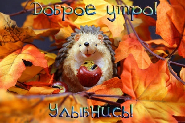 Осень и вторник красивые картинки013