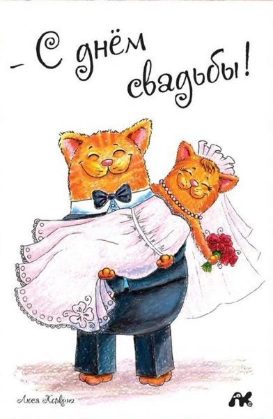 Открытки с днем свадьбы шуточные014