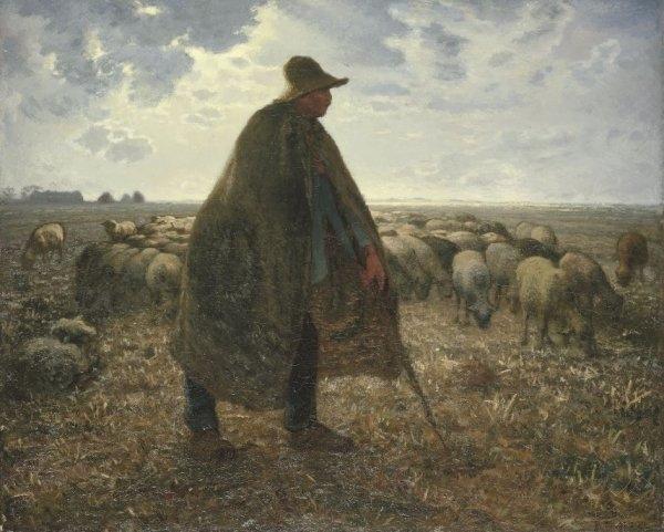 Пастух и овцы картина009