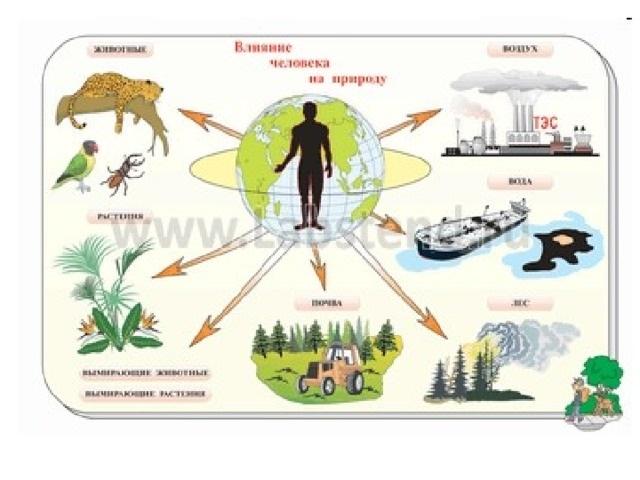 Поздравления с Всемирным днем охраны мест обитаний011