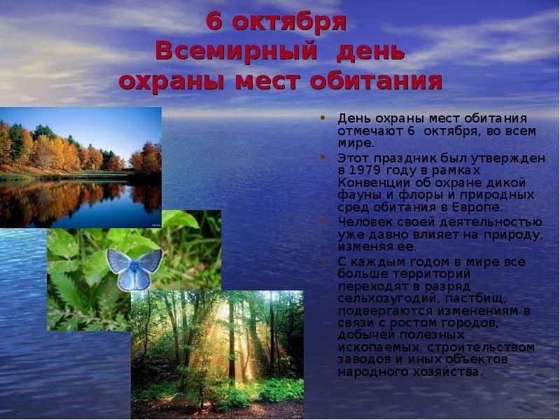 картинки всемирный день охраны мест обитаний видом деятельности