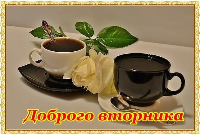 Прикольные картинки с добрым утром вторника013