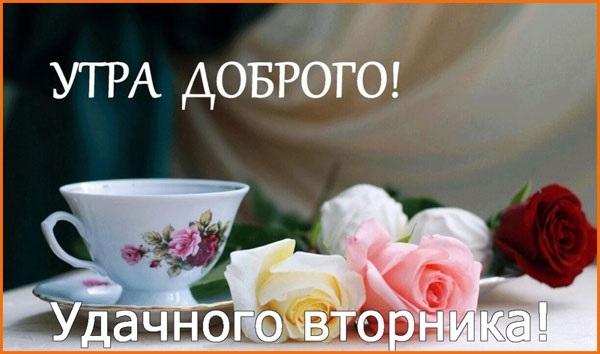 Прикольные картинки с добрым утром вторника019