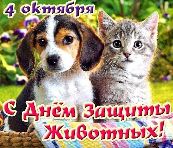 Приятные поздравления картинки на Всемирный день животных001