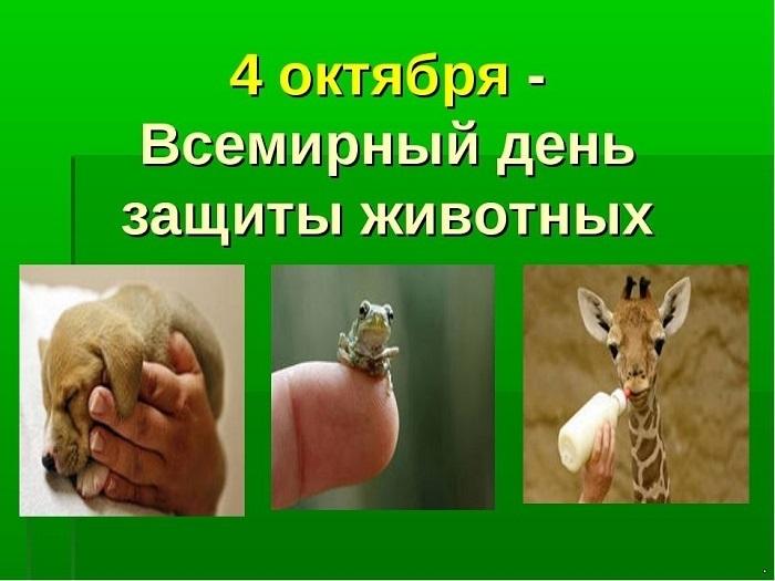 Приятные поздравления картинки на Всемирный день животных006