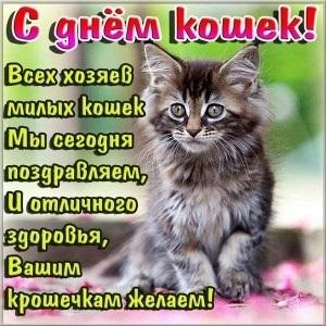 Приятные поздравления картинки на Всемирный день животных010