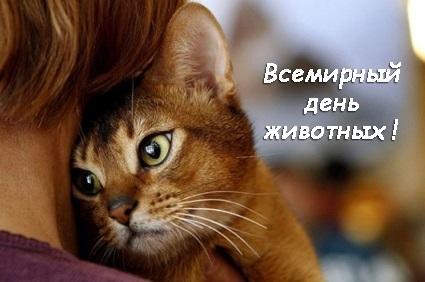 Приятные поздравления картинки на Всемирный день животных015