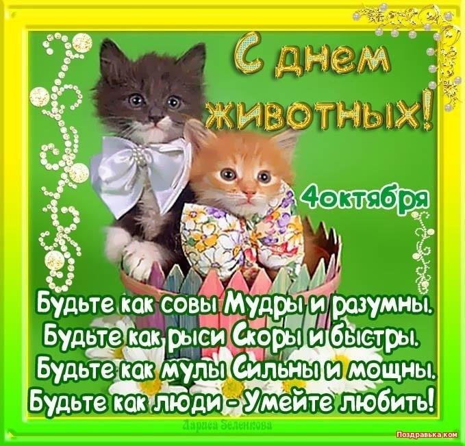 Приятные поздравления картинки на Всемирный день животных016