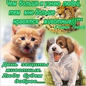 Приятные поздравления картинки на Всемирный день животных017