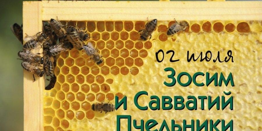 Савватий Пчельник фото и картинки на праздник012