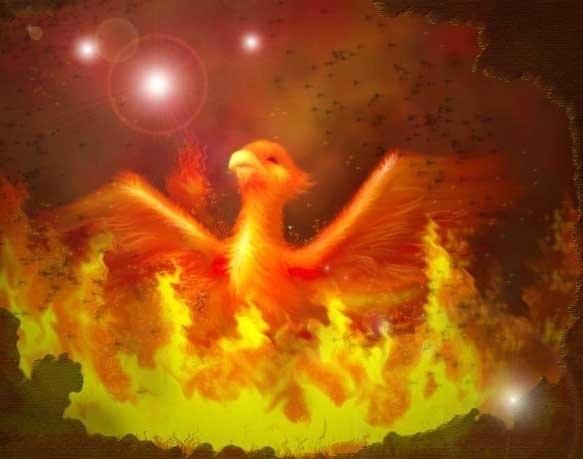 Сказочная жар птица картинки и арты016