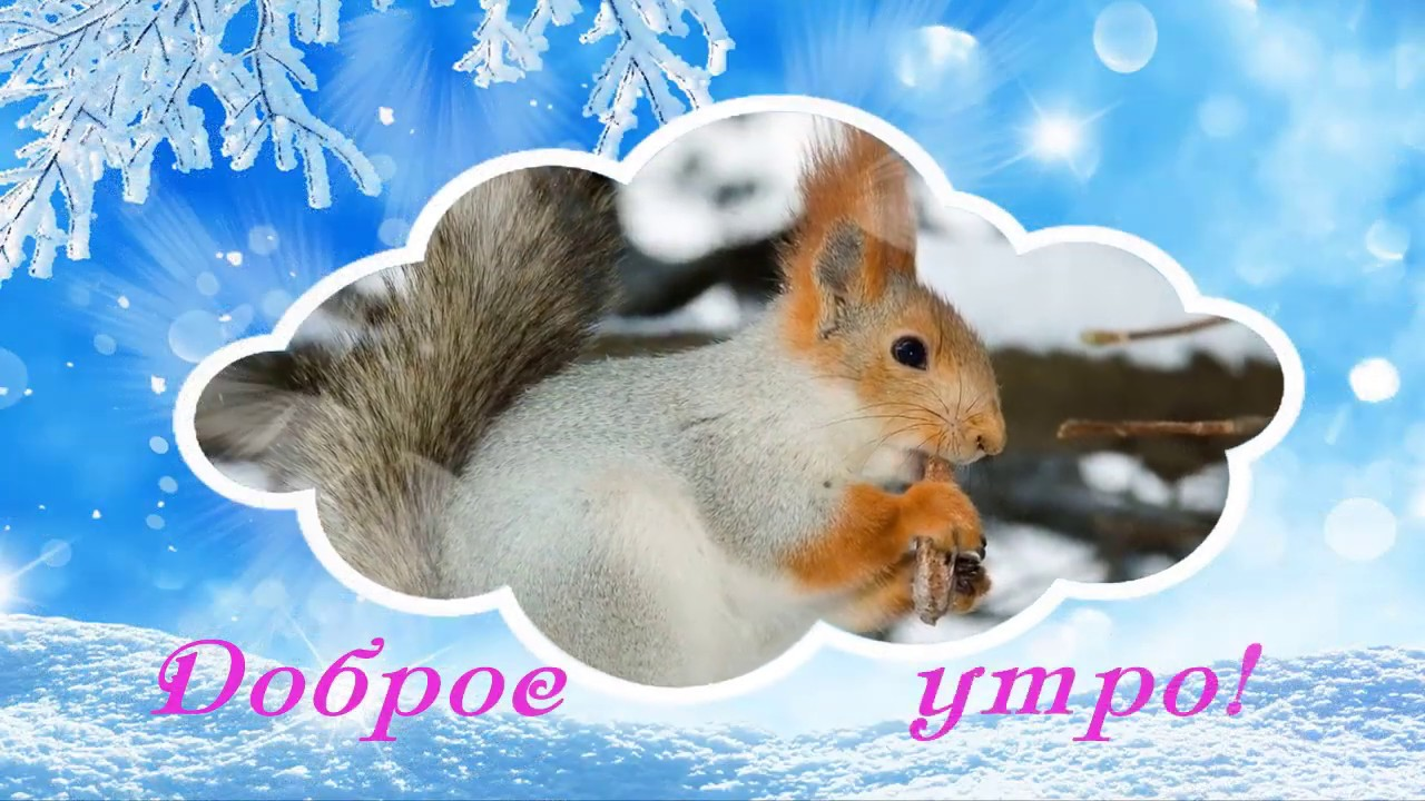 С добрым зимним утром картинки (13)