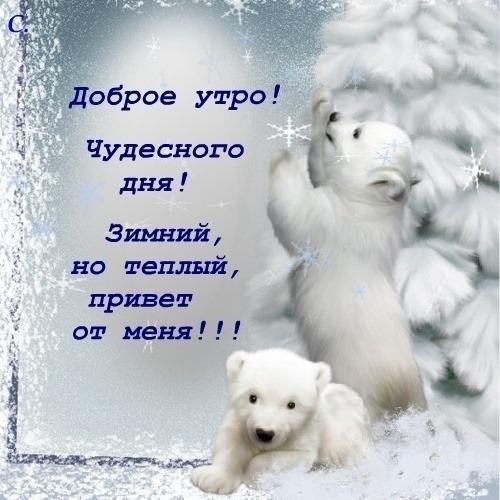 С добрым зимним утром картинки (3)