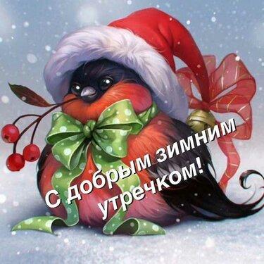 С добрым зимним утром картинки (9)