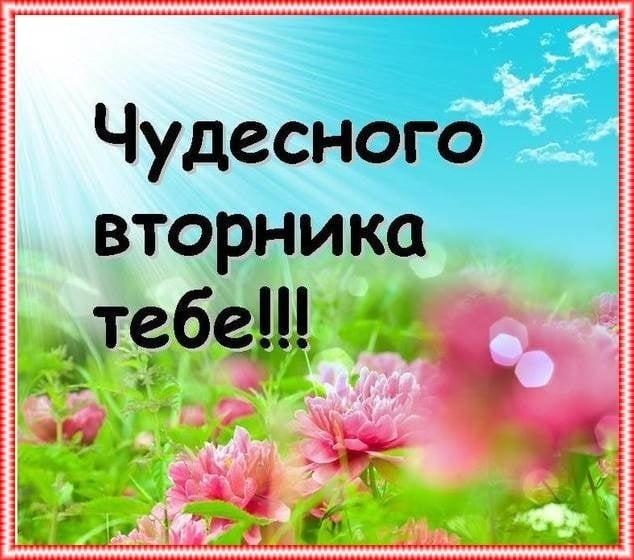 С добрым утром вторника фото и открытки016