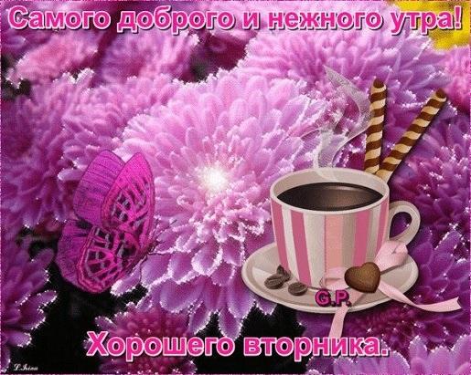 С добрым утром вторника фото и открытки019