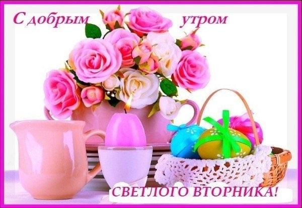 С добрым утром вторника фото и открытки021