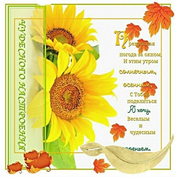Теплого и удивительного доброго утра октября005