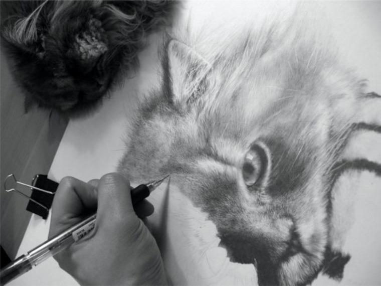 Удивительные рисунки вдохновение карандашом008