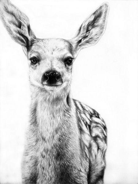 Удивительные рисунки вдохновение карандашом010