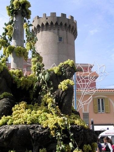 Фестиваль винограда в Марино008