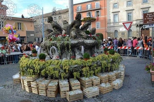 Фестиваль винограда в Марино014
