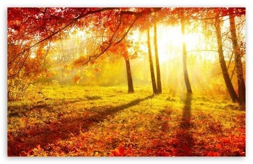Фоны октябрь в хорошем качестве001