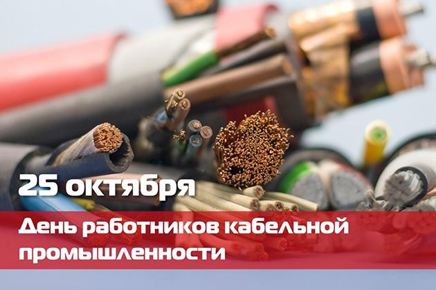 Фото на День работника кабельной промышленности в России005