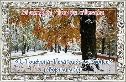 Фото на день Трифон и Пелагея016