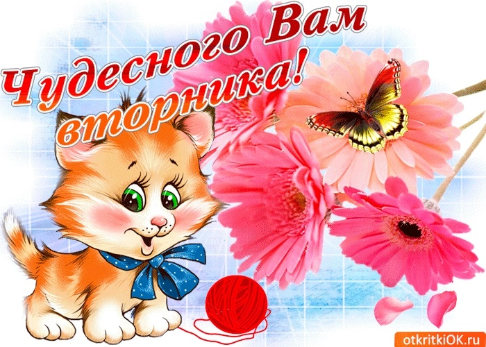 Хорошего вторника открытки и картинки012